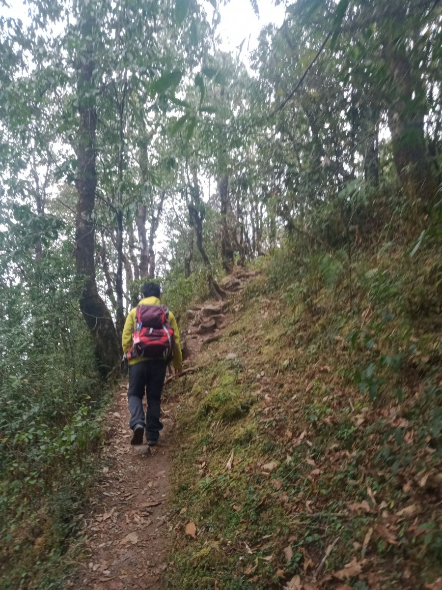 Trek to Dhampus From Pokhara
