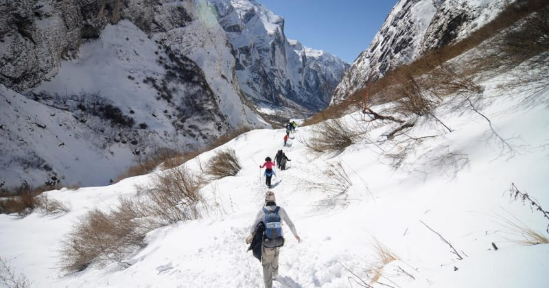 Annapurna Base Camp Trek Ultimate Guide