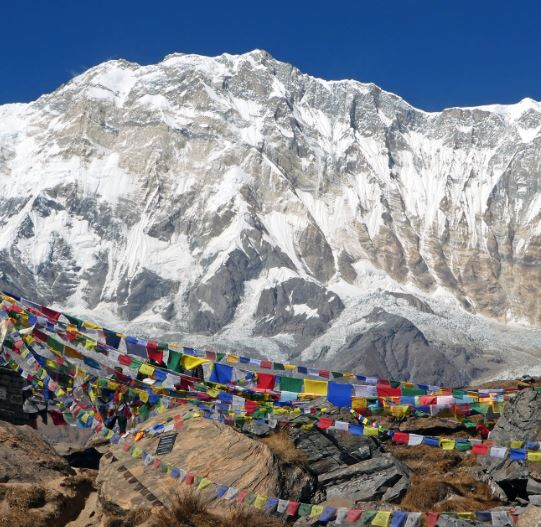 Trek from Machhapuchhre Base Camp to Annapurna Base Camp (ABC) and trek down to Bamboo