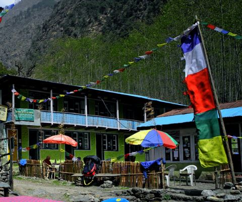 Trek from Kyanjin Gompa to Lama Hotel